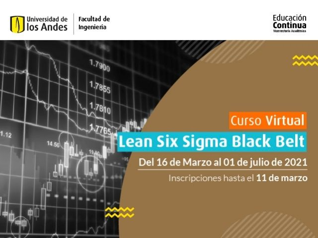 Curso virtual - Lean Six Sigma Black Belt