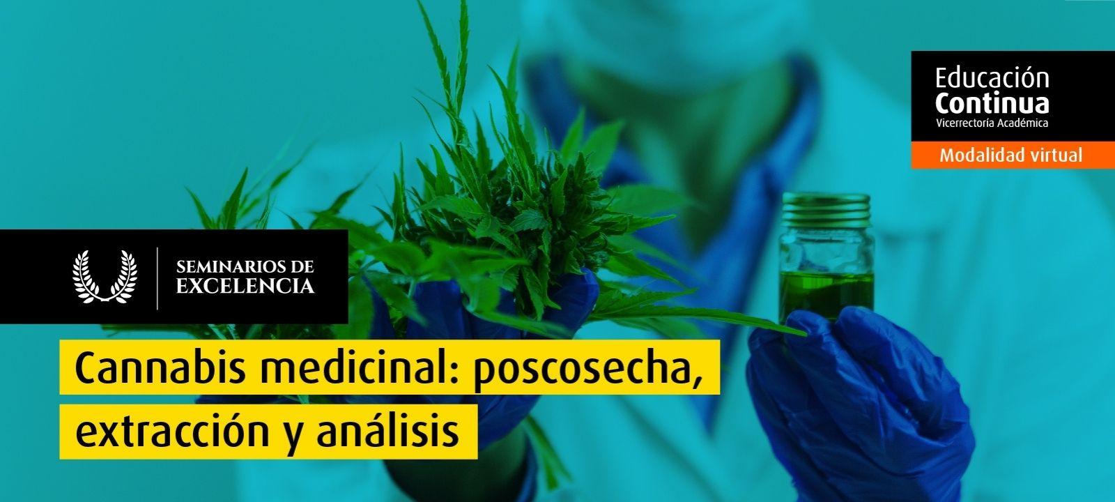 Cannabis medicinal: poscosecha, extracción y análisis
