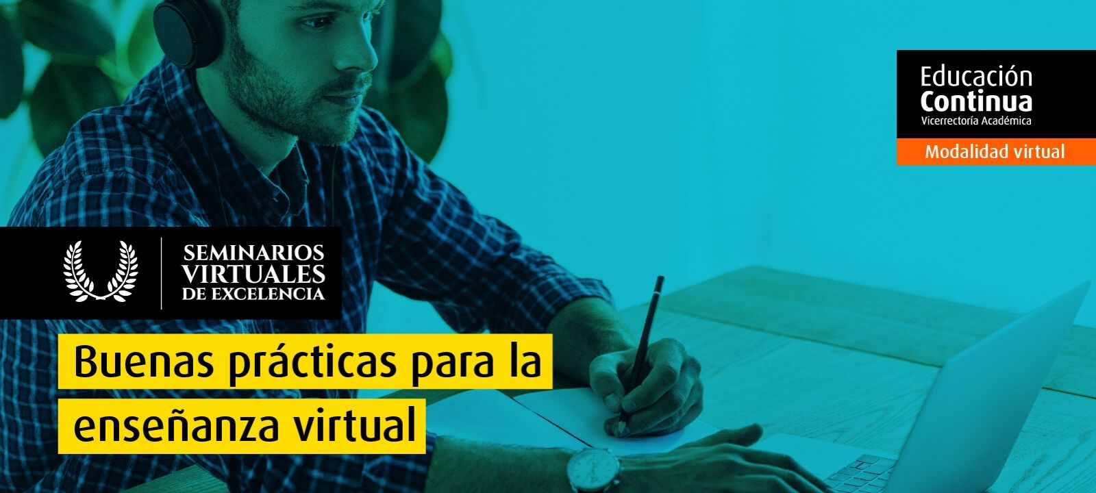 Seminario Virtual de Excelencia - Buenas prácticas para la enseñanza virtual