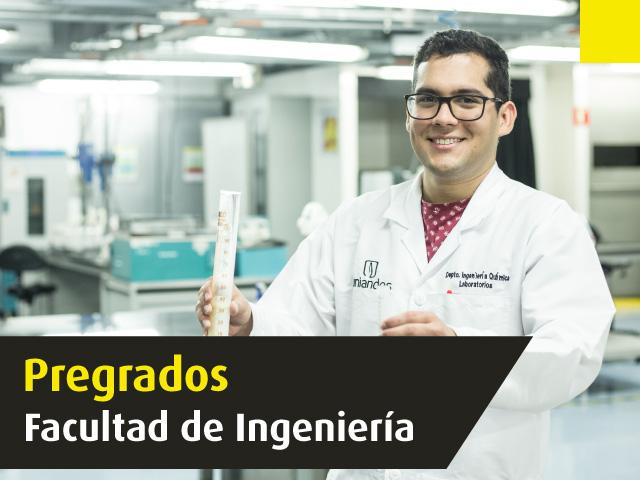 Pregrados en Ingeniería   Universidad de los Andes