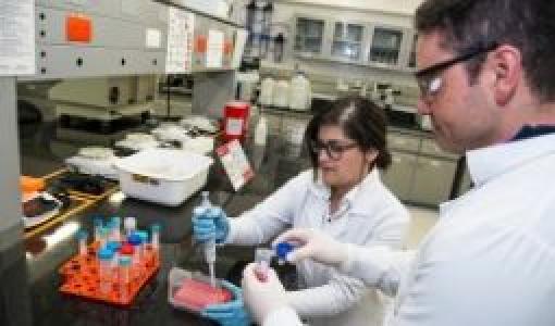Carolina Muñoz y Juan Carlos Cruz, profesores de Ingeniería Biomédica