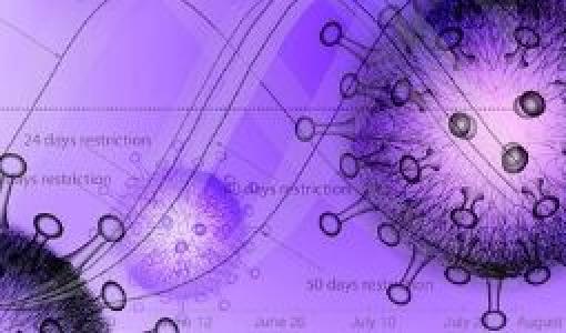Modelamiento Covid de Ingeniería Biomédica
