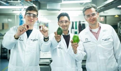 Investigadores desarrollan producto que retarda la maduración y envejecimiento de las frutas